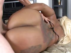BBW, Ass, BBW, Hardcore