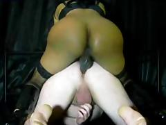 Tranny domination