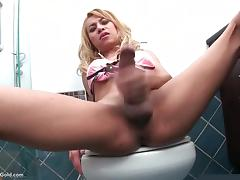 Shemale Candy wanking off in the WC