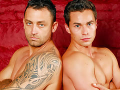 Renato Belaggio, Tom Gree XXX Video