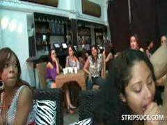 Sluts giving BJs to stripper in gangbang