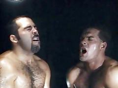 Hank Hightower & Steve Harper & Zak Spears in All About Steve Scene 5 - Bromo