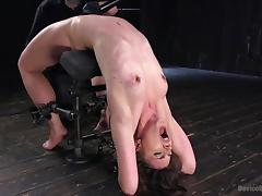 katharine bends over backwards to please