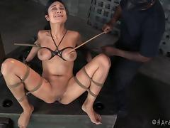 Alluring slaved brunette in bondage being worked on using sex machine in BDSM shoot