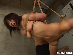 Bound, Amateur, Asian, BDSM, Bound, Sucking