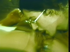 Lesbian and Hetero Couples Fuck in Same Room 1960