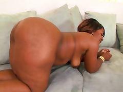 Sexy Black Bootylicious Bbw