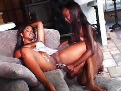 Sexy lesbians licking and sucking