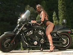 Biker, Big Tits, Biker, Blowjob, Couple, Doggystyle