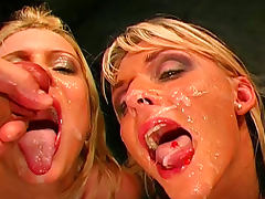 Innocent brunette is getting fucked in her wide throat