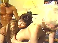 Francois Papillon Bedtime Stories 1989