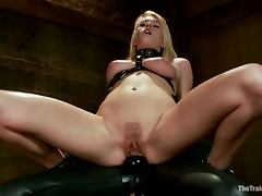 All, BDSM, Bondage, Humiliation