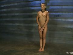 Sexy Skin Diamond gets gagged and toyed in a barn