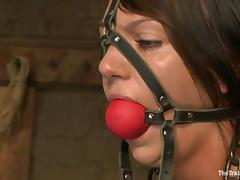 All, BDSM, Bondage, Cute, Sucking, Tied Up