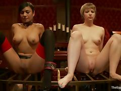 Kinky chicks make an amaizing show in BDSM video