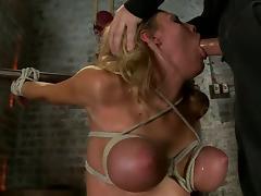 Bar, Bar, BDSM, Bondage, Bound, Penis