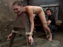 free Bondage porn videos