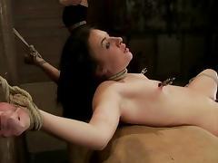 Kinky Ashli Orion licks mistress' tits and gets tortured