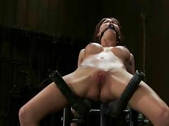 All, BDSM, Tease