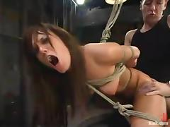 Numerable Holly Wellin gets fucked together with whipped apropos a barn porn video