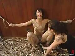 Dylan Ryan enjoys mud on say no to multitude increased by a dildo in say no to cunt