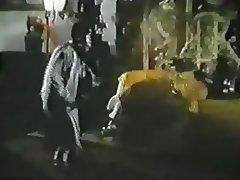Kung Fu Cockfighter 1976