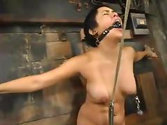 Bondage, BDSM, Bondage, Brunette, Slave