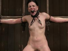 Brunette bounce and punished with clothes pin