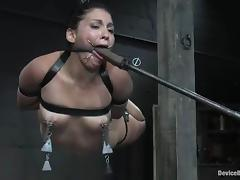 Jade Indica and Sabrina Fox get leads on their tits and like it much