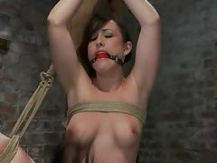 Humiliation, Adorable, BDSM, Bondage, Bound, Humiliation