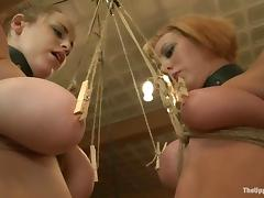 Bound, Ass, BDSM, Blonde, Bondage, Bound