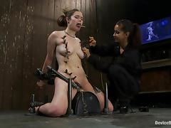 All, BDSM, Bondage, Femdom, Fetish, Face Fucked