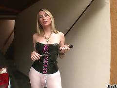 Sabrina Sherman Gets Drilled In A Hot Tranny Sex Scene