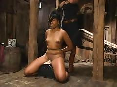 BDSM Files Redux 016
